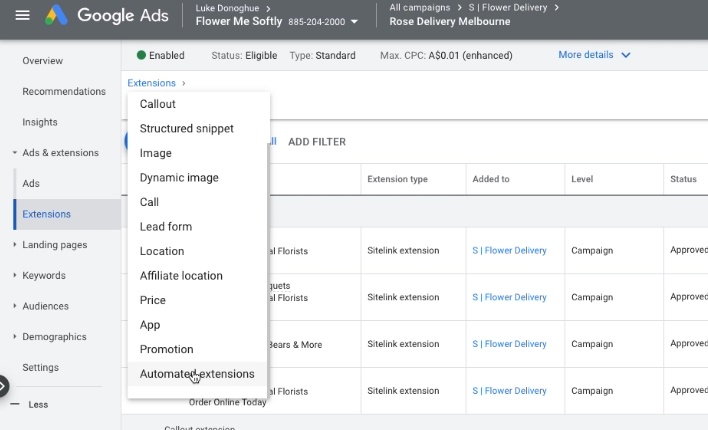 how to enable Google Ads automated extensions